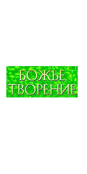 tvorenie_title.png